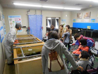 魚崎デイサービス 11月の所外活動